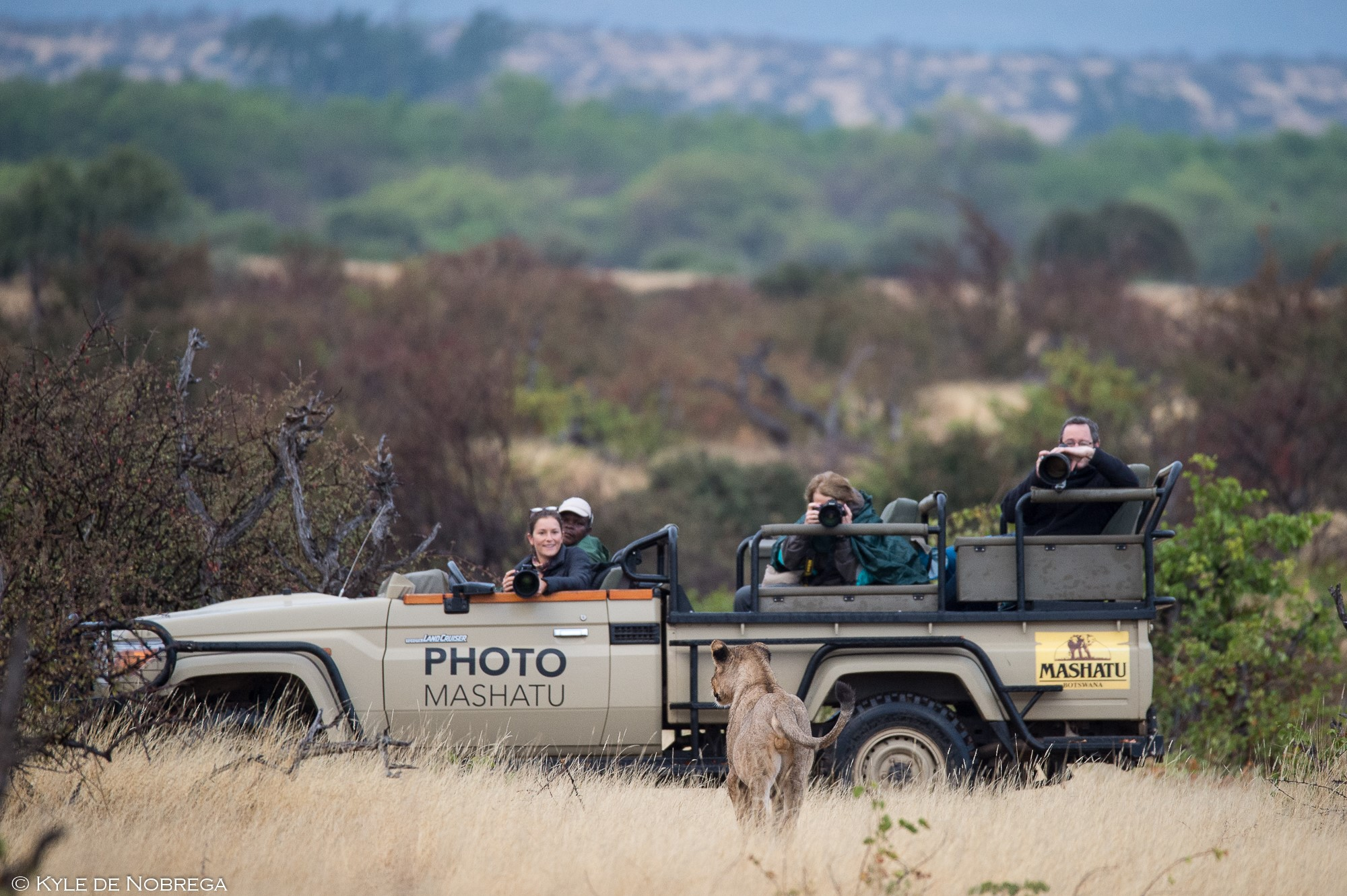 Photographic Safari at Mashatu Game Reserve